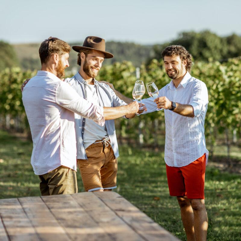 Guys tasting wine on the vineyard