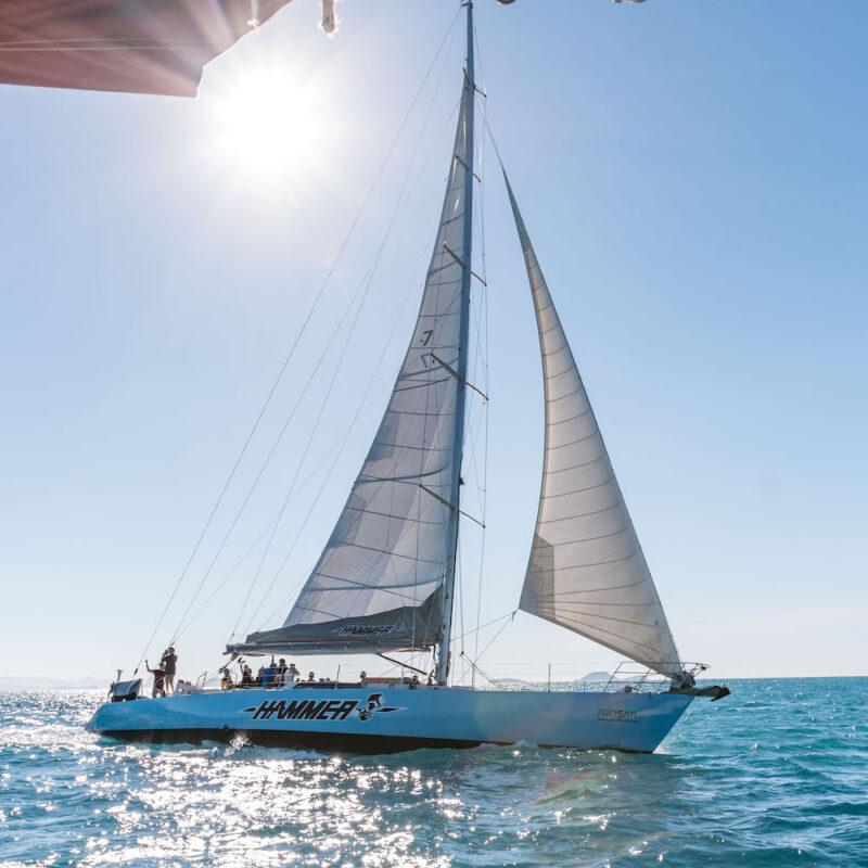 Hammer sailing
