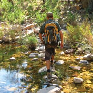 Walking in the Kimberley