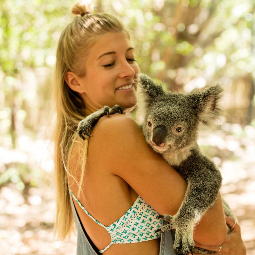 Bungalow Bay Koala Village, Magnetic Island, QLD