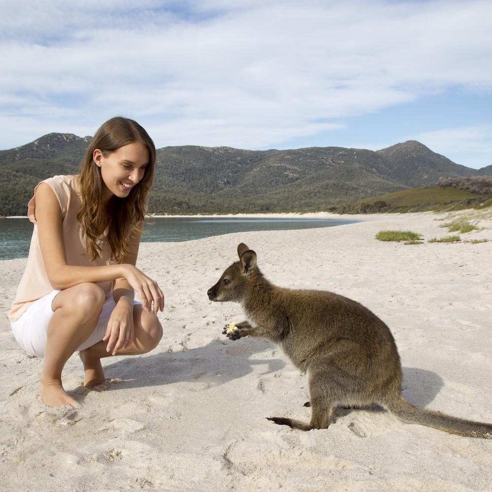 Freycinet Tasmania Beach