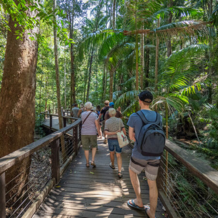 Tours from Hervey Bay