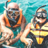 Have a great day snorkelling on the Great Barrier Reef